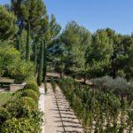 cezae-jardin-délicat-paradou (22)