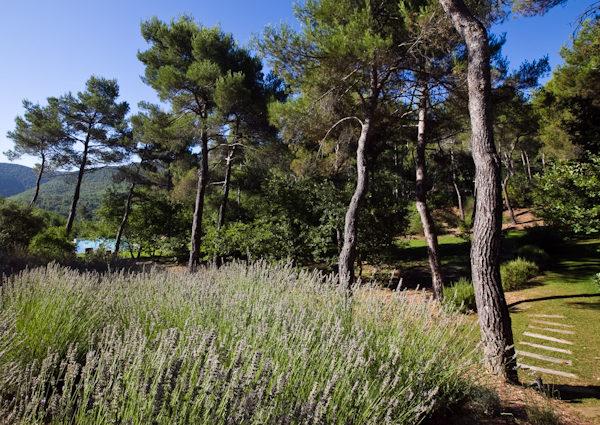 cezae-jardin-paisible-aix (3)
