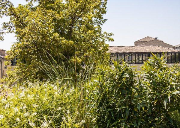 cezae-jardin-elegant-avignon (11)